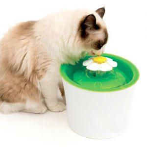 fuentes-de-agua-para-gatos